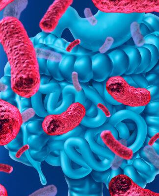 Probiotici: cosa sono, a cosa servono e dove trovarli