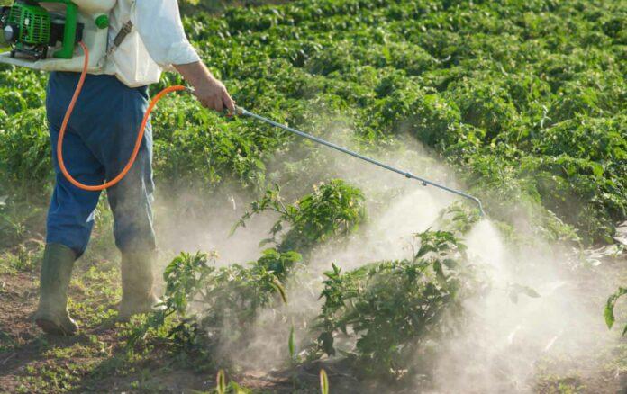 Pesticidi: cosa sono, a cosa servono, classificazione e controindicazioni
